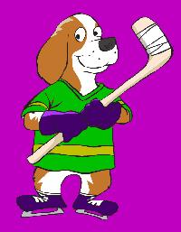 descriptive ice hockey essay