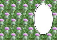 St Andrews Day Downloads Thistle