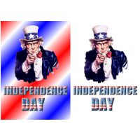 American Independence Day Tooer