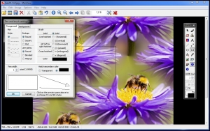 IrfanView Free Image Viewer