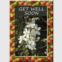 Get Well Soon Card Kit