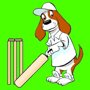 Free Cricket Card Making Papers to download and print.