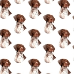 German Pointer Card Making Paper.