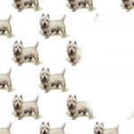 West Highland Terrier Insert Sheet.