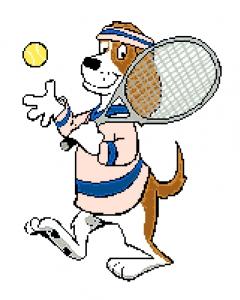 Brewster Tennis.
