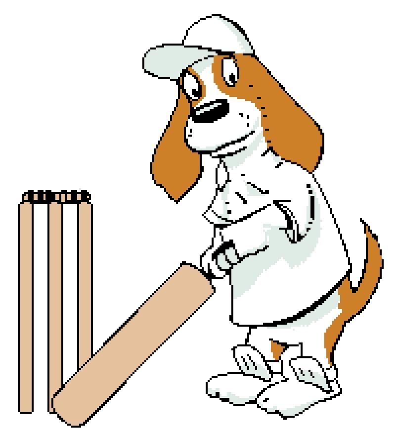 Brewster Cricket.
