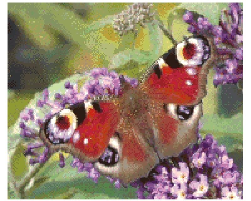 Butterfly Cross Stitch.