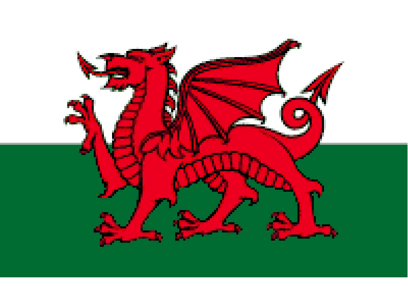 Welsh Dragon.