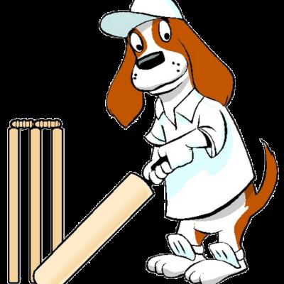 brewster-cricket-png-med