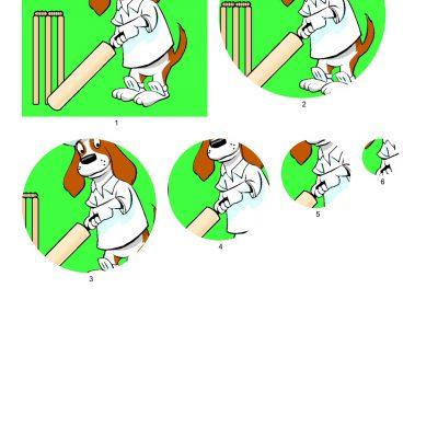 brewster_cricket_circle
