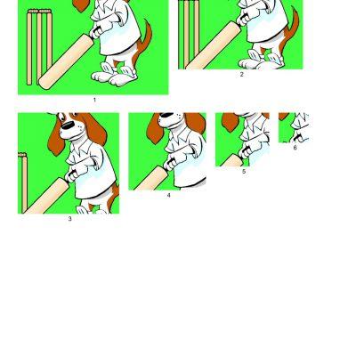 brewster_cricket_square