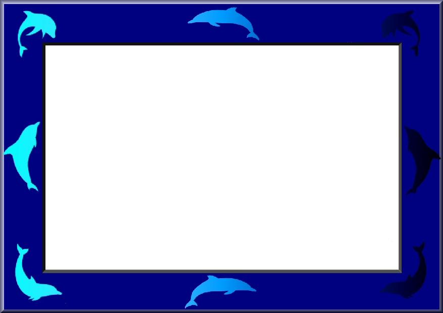 a6_dolphin_frame_03