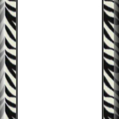 zebra_a6