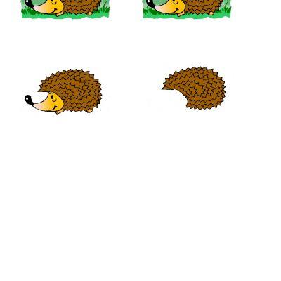 Hedgehog_1