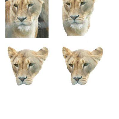 Lion Decoupage