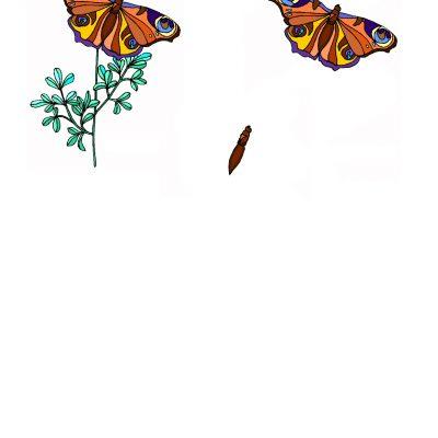 butterfly_decoupage1