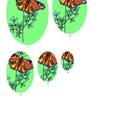 butterfly001_3