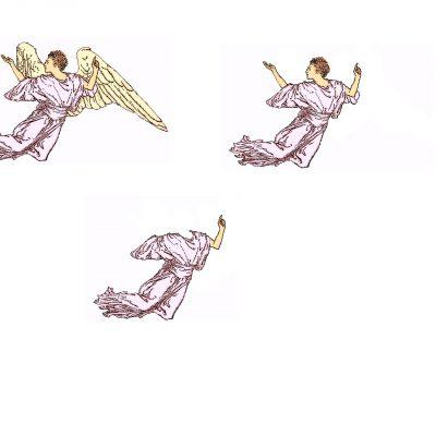 angel004