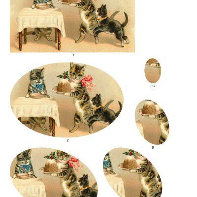kittenstwist02