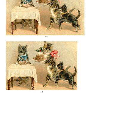 kittenstwist03a