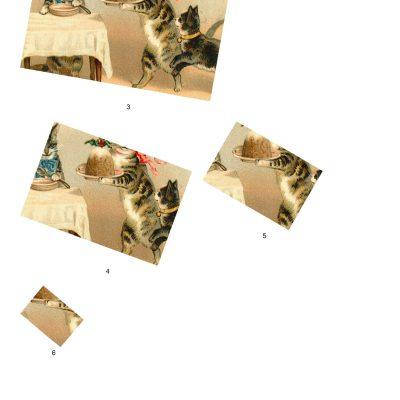kittenstwist03b