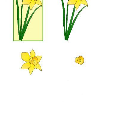 daffodil_decoupage