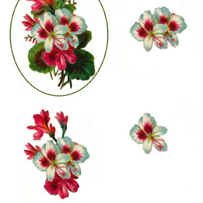 Flower Decoupage