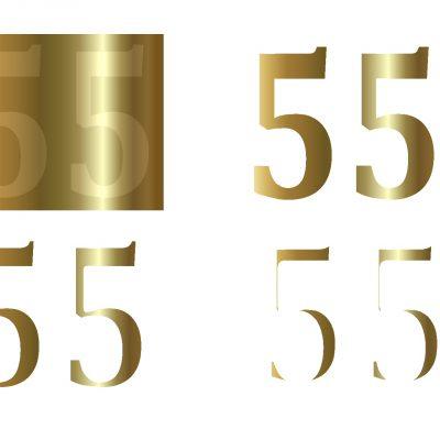 55birthday01