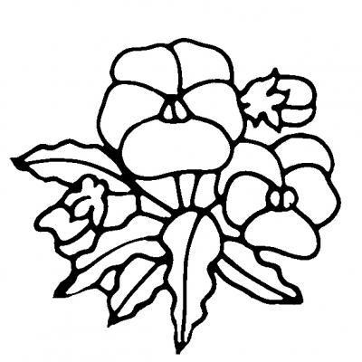 flower_pansey