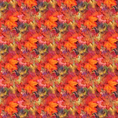 12x12_autumn_background