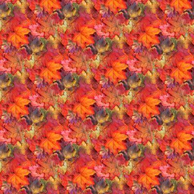 8x8_autumn_background
